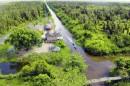 U Minh Hạ - Chiến lược phát triển nông – lâm nghiệp ổn định và bền vững